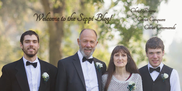 Seppi Blog