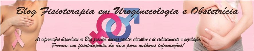 Blog Fisioterapia em Uroginecologia e Obstetrícia