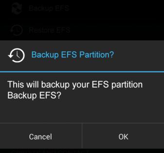 EFS Partition of Samsung Galaxy