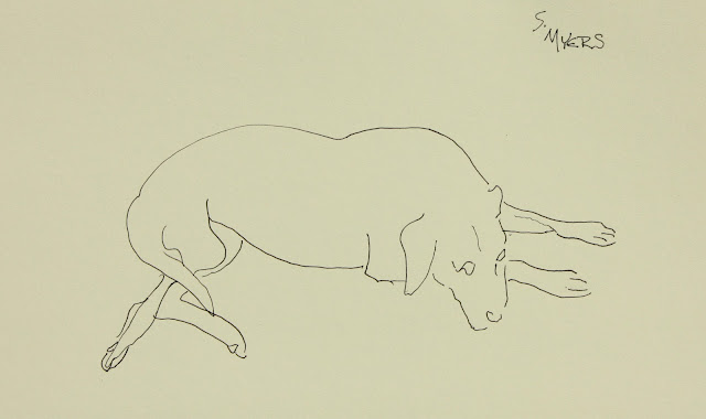 Labrador, Sarah Myers, S. Myers, ink, drawing, study, line-drawing, paper, sketch, minimalist, spontaneous, dog, relaxing, hound, art, arte