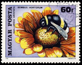 Sello de Hungría de 60f. de un abejorro de jardín (Bombus hortorum) sobre una flor manta (Gaillardia aristata)