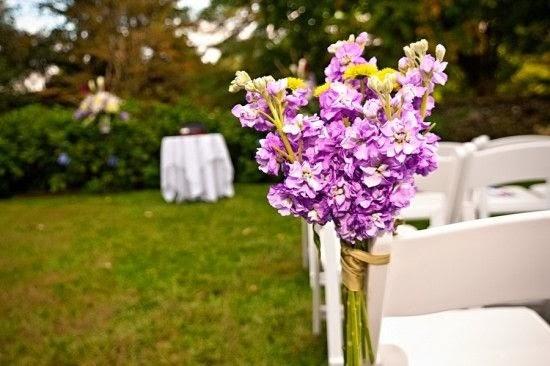 Orquídea Radiante