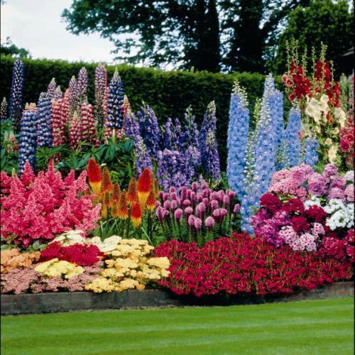 Flores para jardines terrazas y jardines fotos de jardines for Figuras para el jardin