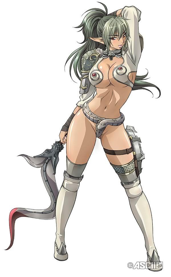 mi  233 rcoles  14 de diciembre de 2011Queens Blade Echidna Cosplay