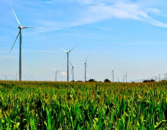A wind farm in Illinois. (Credit: Tom, flickr) Click to Enlarge.