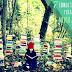 Recursos: Libros sobre Medio ambiente para niños y niñas