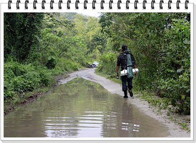 Monsoon Jungle Camping Log ~ The Last Leg Trekking Out