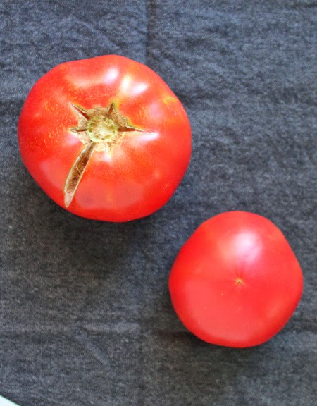 Homegrown garden tomato harvest: Caspian pink tomatoes