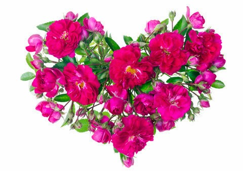 Pink Rose Heartshttp://my143rose.blogspot.com/ Pink Roses And Hearts