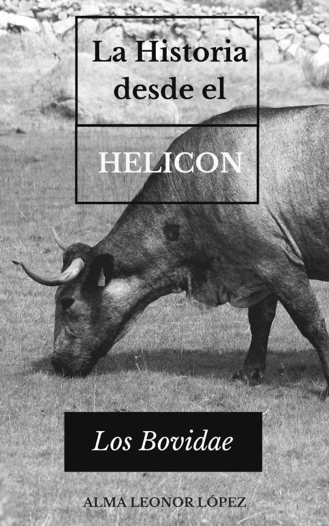 LA HISTORIA DESDE EL HELICON: LOS BOVIDAE