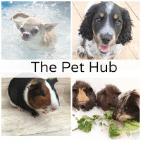 The Pet Hub