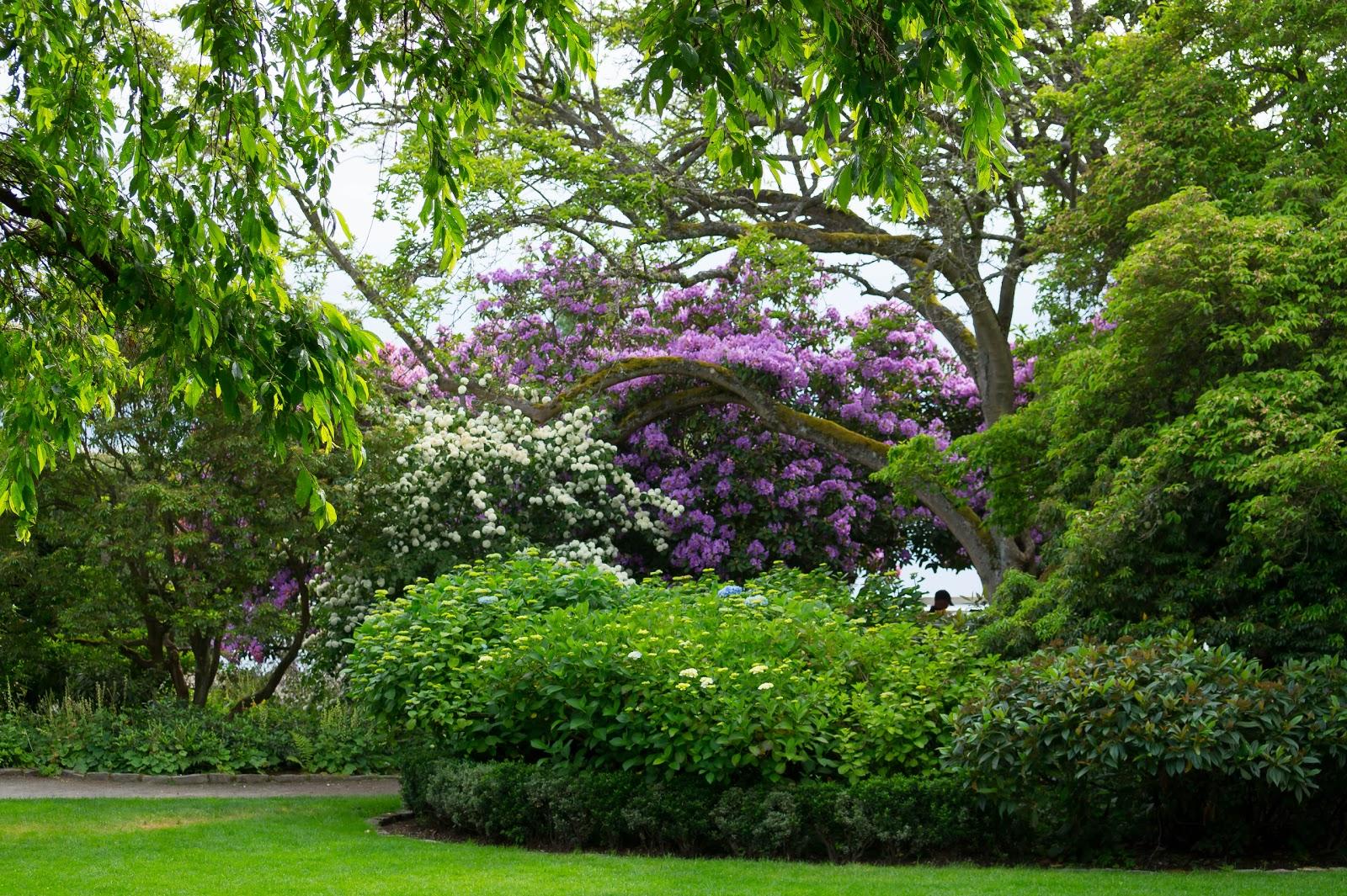 Формально это был частный сад принадлежавший горожанину Реджинальду Парсон. После его смерти в 1956 году его дети подарили сады городу