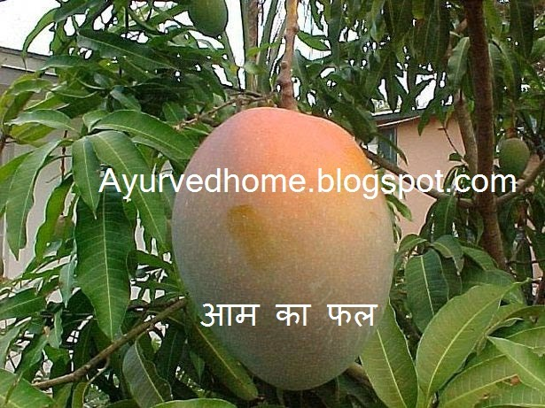 different names of mango in different languages