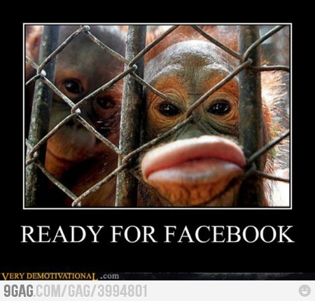 Funniest Monkey Duck Face