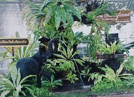 จัดสวนไม้มงคล จัดสวนด้วยตัวเอง Garden Tree Garland