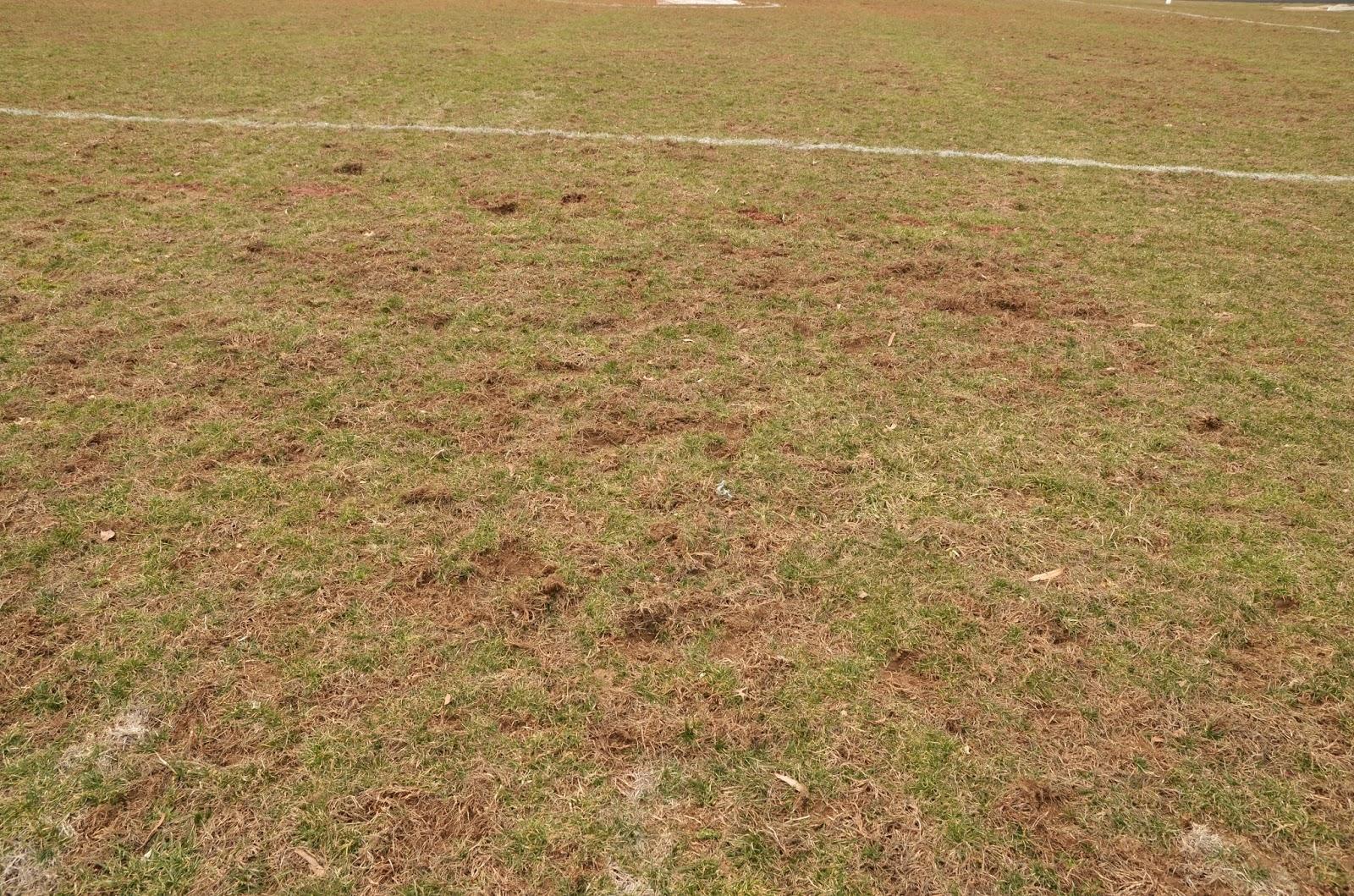 Perryville High School--Divots on football field