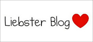 6 PREMIOS LIEBSTER BLOG
