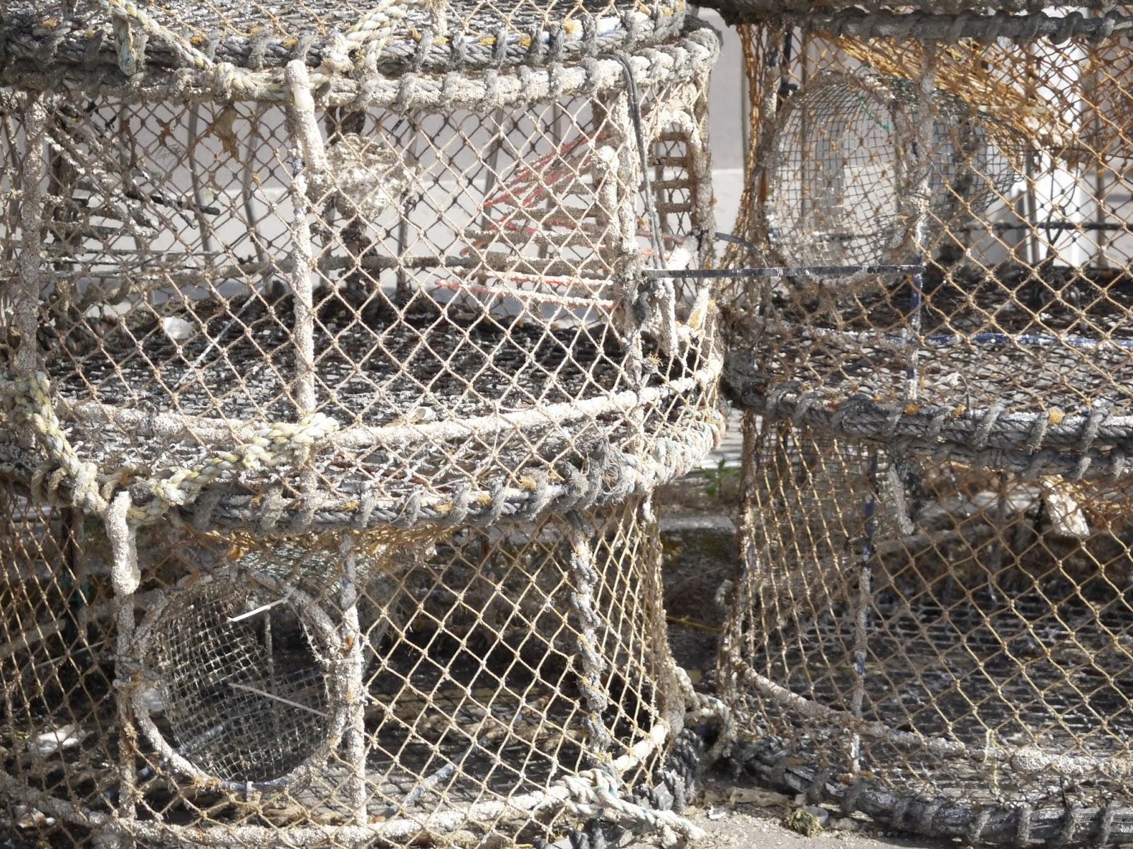 filets de pêche port de poole