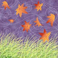 Autumn Wind1
