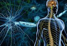 علاج التصلب اللويحي بالخلايا الجذعية