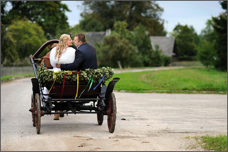 vestuvinės nuotraukos su arkliais