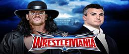 WWE UNDERTAKER VS SHANE McMAHON