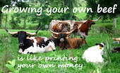 Growing your own beef is like printing your own money