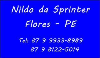 Nildo da Sprinter - Flores - PE