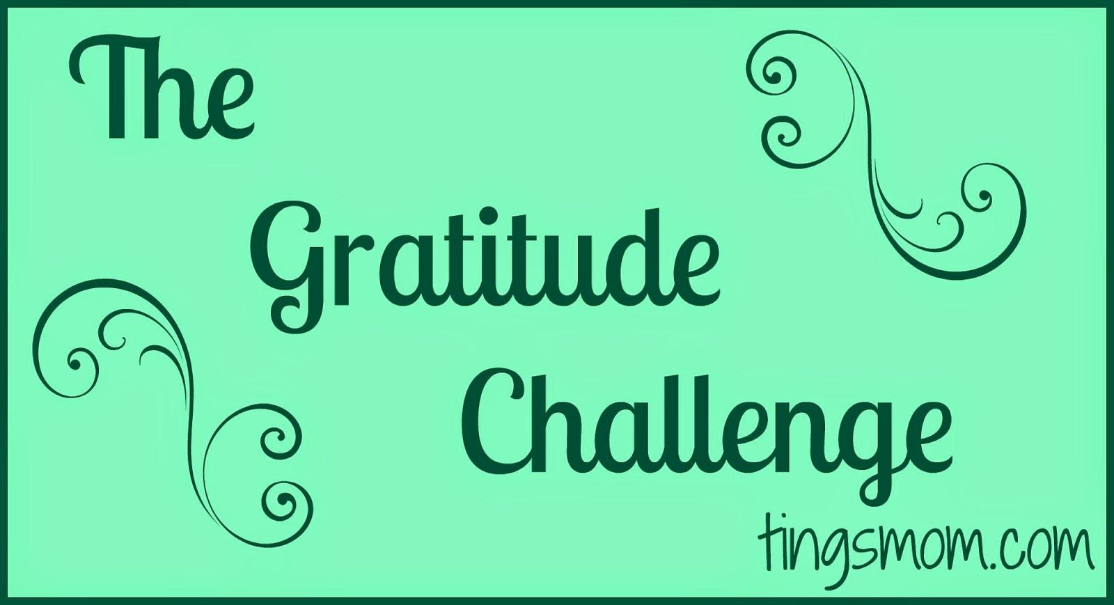 The Gratitude Challenge | #kids #routines #kidactivities