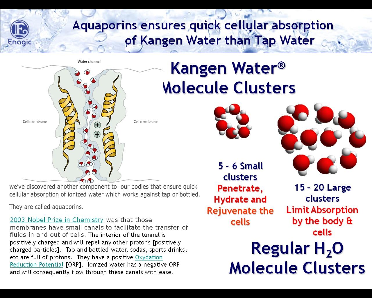 kangen water indonesia properties of kangen