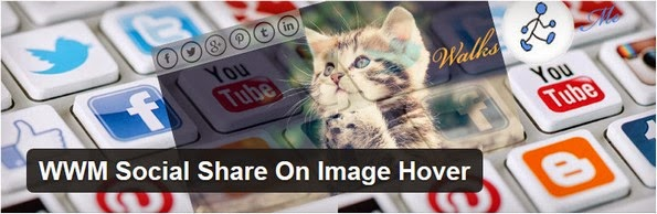 WWM Social Share On Image Hover plugin