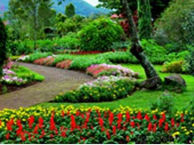 foto taman bunga nusantara cipanas puncak cianjur
