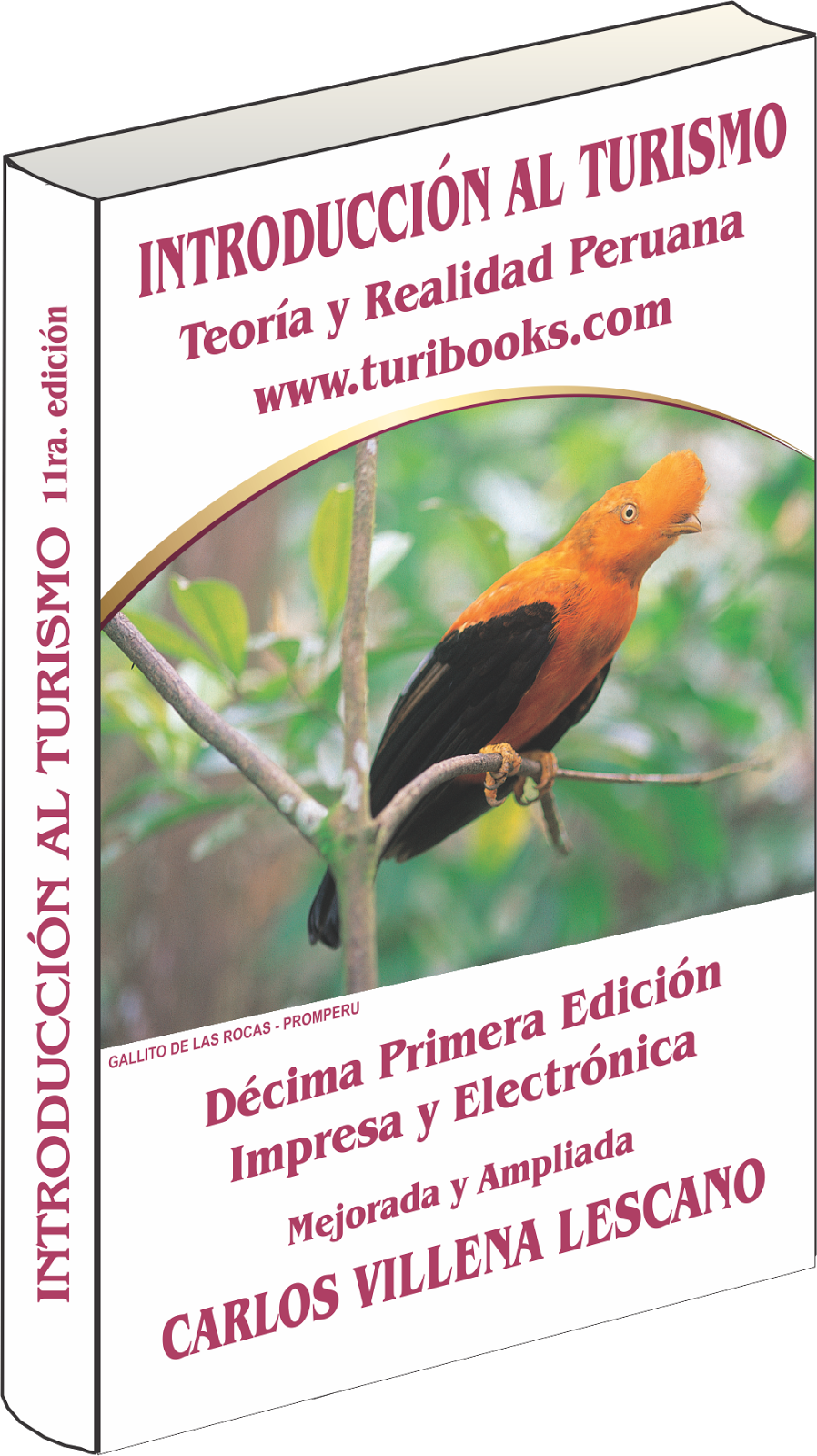 Introducción al Turismo. Edición  2014