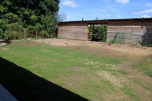 En travaux semer de la pelouse - Combien de temps pousse le gazon ...
