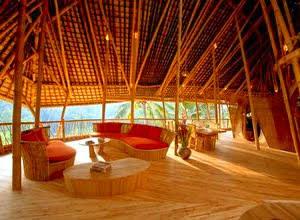 cara-memilih-bambu.jpg