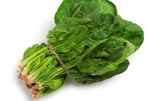 spinach is thought to have originated in ancient persia arab traders ...