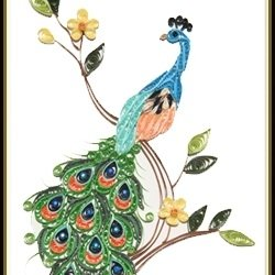 Peacock Special paper quilling