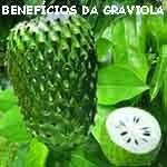 Benefícios medicinais da graviola