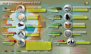 threatened species, endangered species, nature, biodiversity