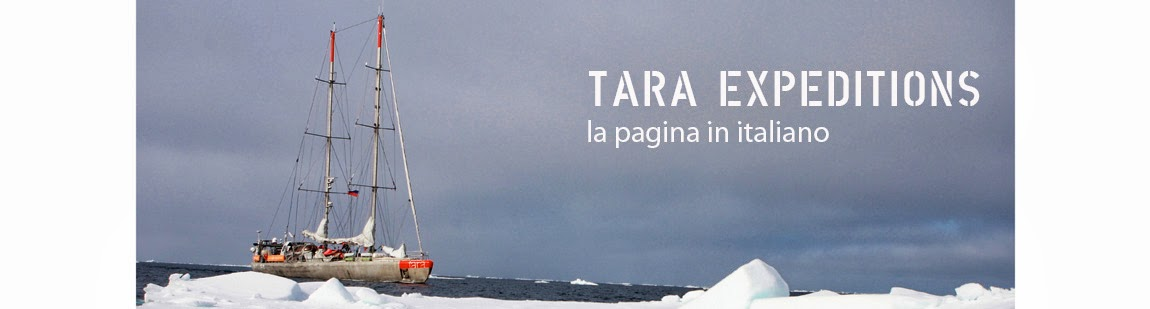 TARA EXPEDITIONS in italiano