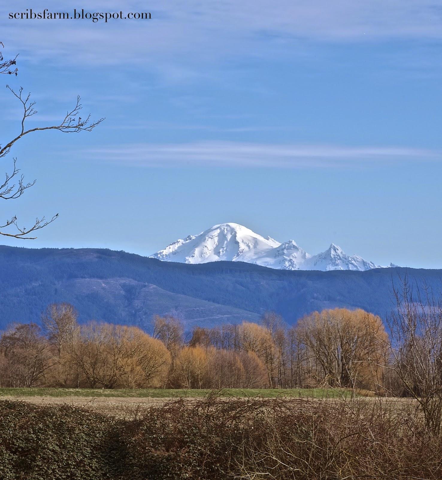 washington peaks