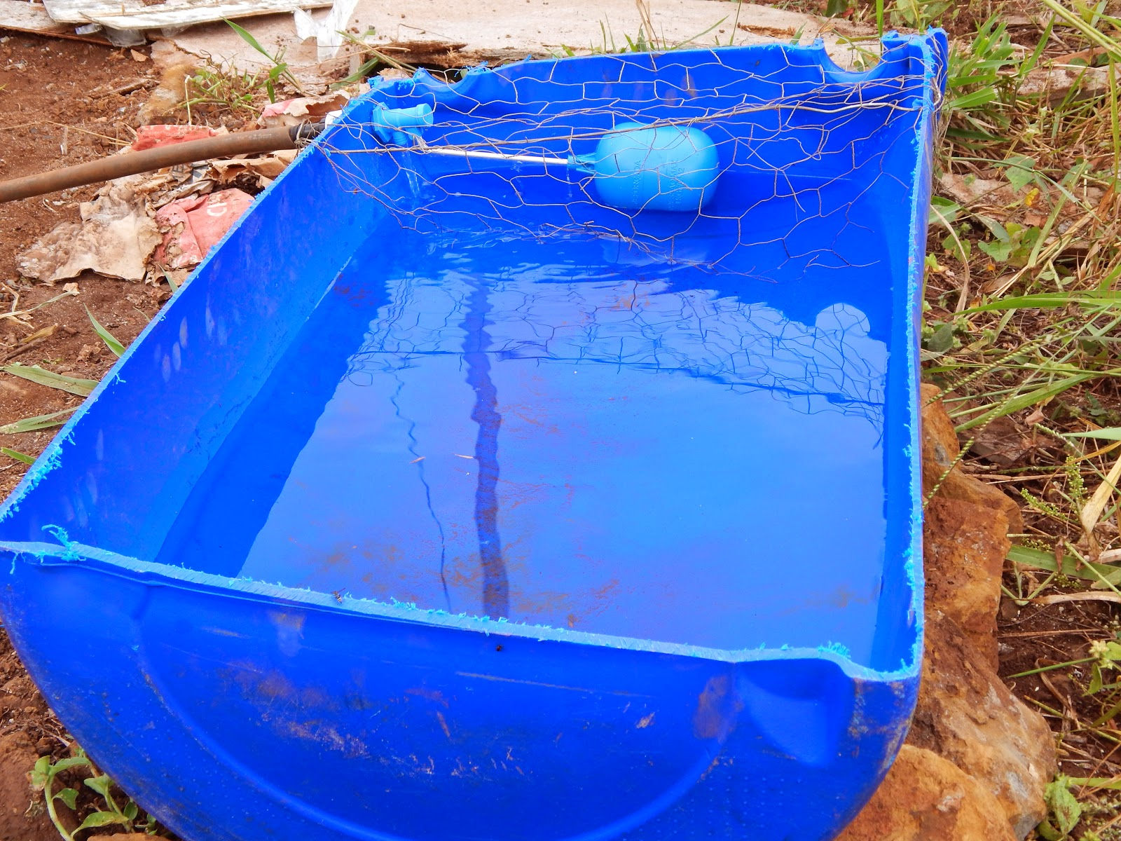 Retiro ecol gico transi o for Tambores para agua