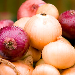 onion for fat reducing