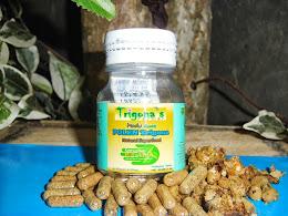 Beepolen Trigona