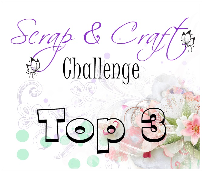 Top 3 at the Scrap & Craft Inspiration Blog
