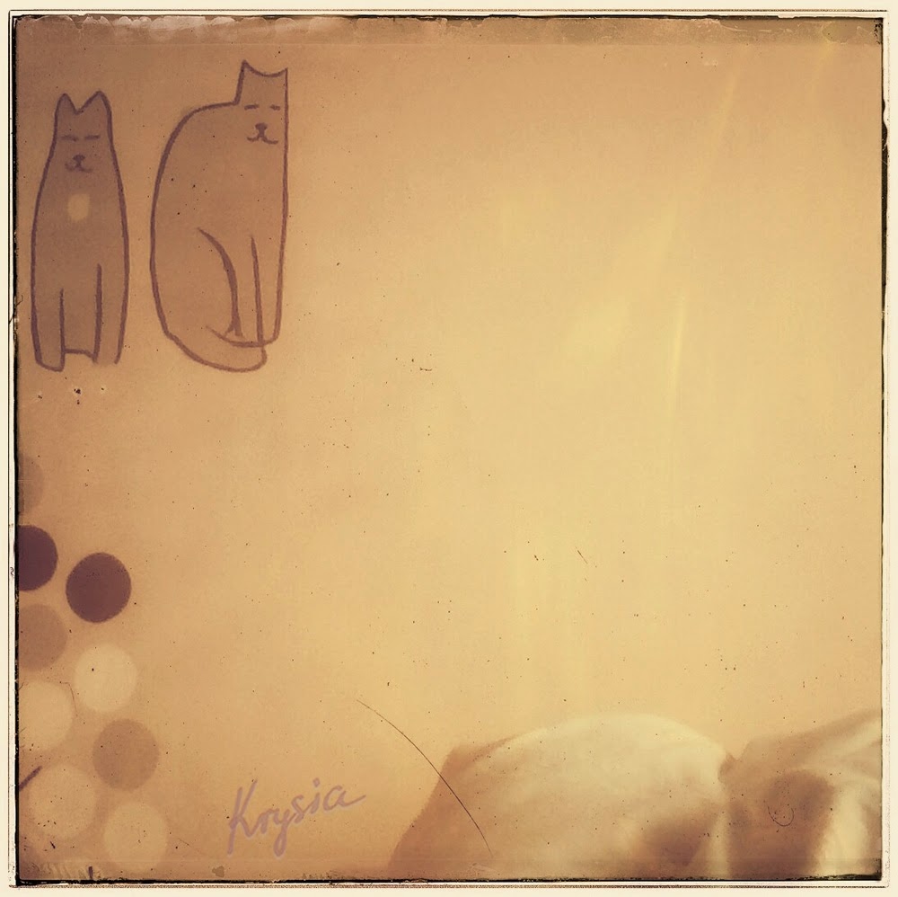 Krysi dom i koty w sypialni