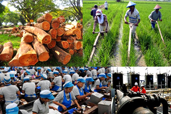 Kegiatan ekonomi di Indonesia memanfaatan sumber daya alam