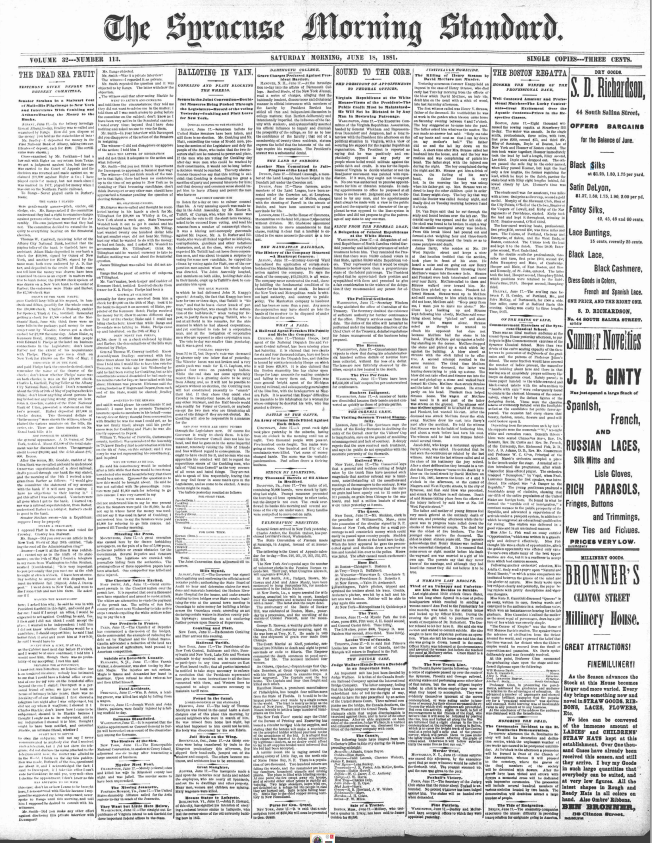 Climbing My Family Tree: The Syracuse Morning Standard, Saturday Morning, June 18, 1881