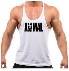camisa para maromba, camisa de treino da animal em diversa as cores