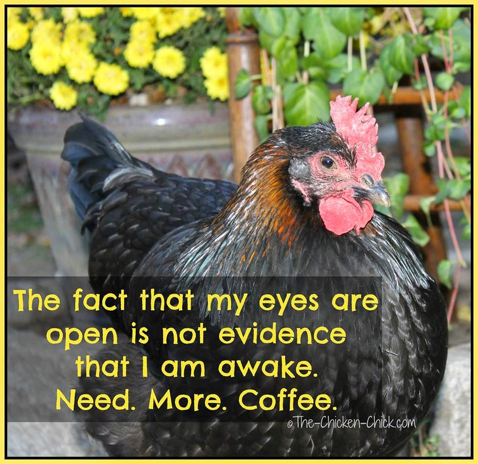 The fact that my eyes are open is not evidence that I am awake. Need. More. Coffee.